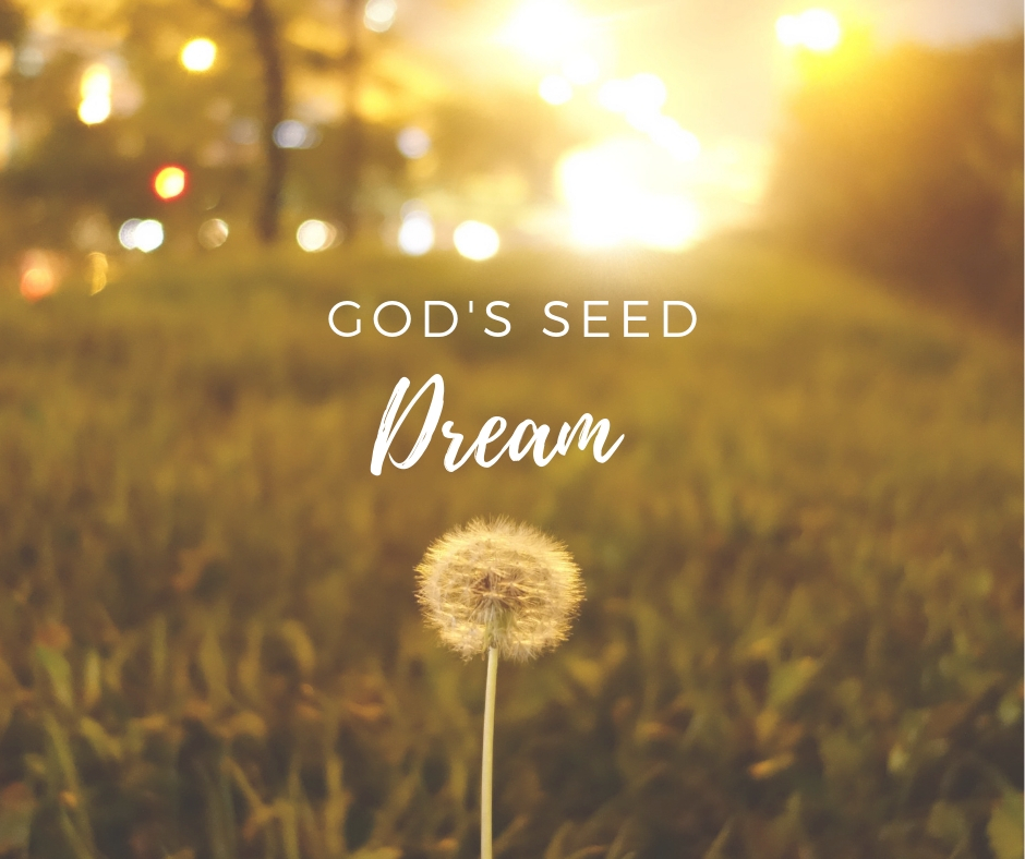 God's Seed Dream
