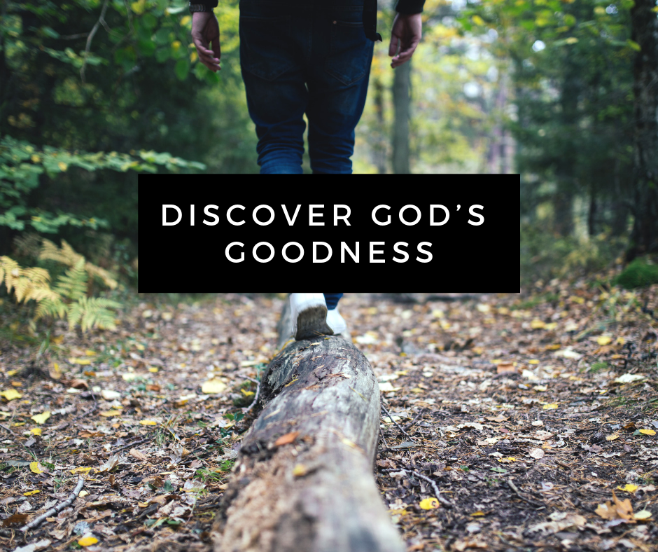 Discover God's Goodness
